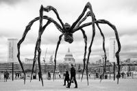 sample art work of Louise Bourgeois
